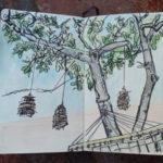 hammock_sketch